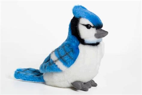Blue Jay - 6 inch Stuffed Animal