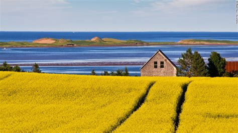 Things to do in PEI: Anne of Green Gables and so much more