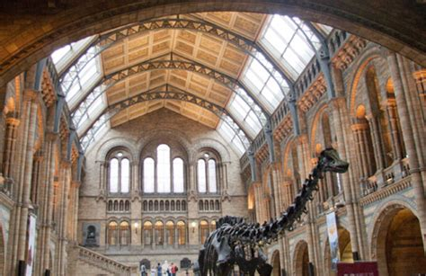 The Natural History Museum London - A World Class Museum