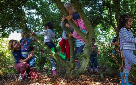 New affordable, outdoor preschool brings breath of fresh