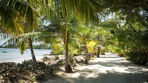 All-Inclusive Rooms | Andros Island Resort | Smallhope Bay