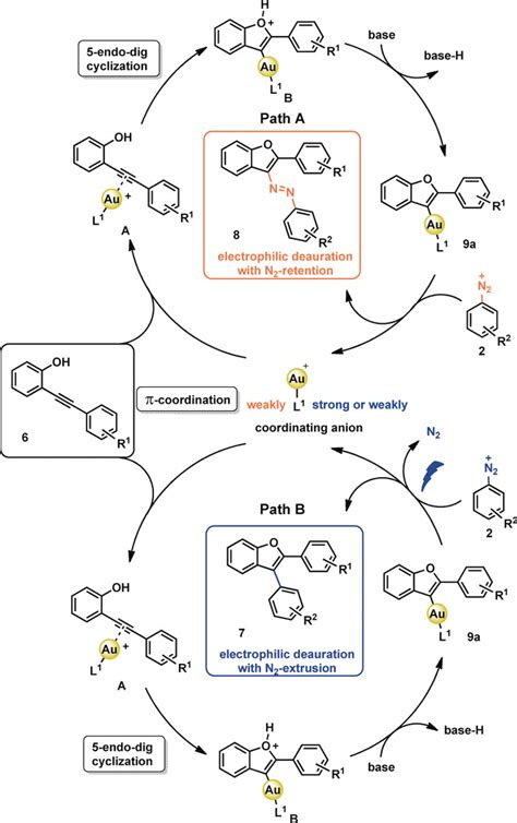 Light‐Induced Mechanistic Divergence in Gold(I) Catalysis