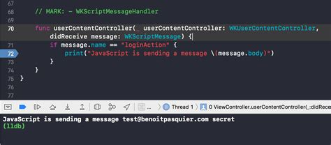 How to use Javascript with WKWebView in Swift