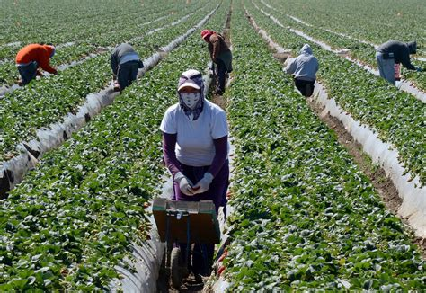 National Farm Workers Association - The Woodstock