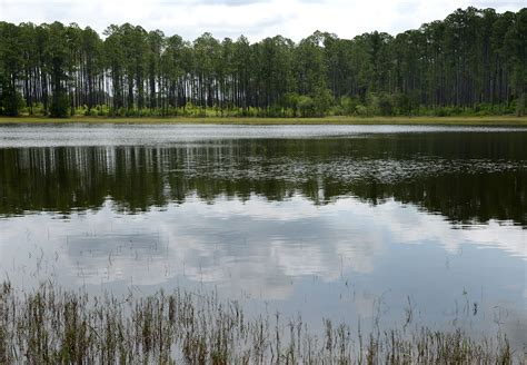 3 Must Visit Nature Trails at Rocky Bayou State Park in