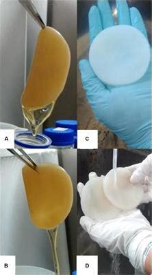 Frontiers | Production of Bacterial Cellulose by
