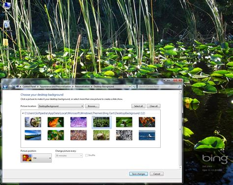 Download Bing Earth Day Windows 7 Theme