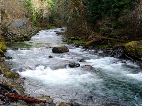 Sol Duc River Washington State Olympic National Park Hd