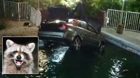 Motorist Crashes Car Into Swimming Pool as She Tries to
